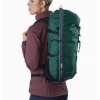 Arc'teryx Brize 25 Backpack, Paradigm, Side View 1