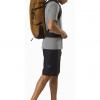 Arc'teryx Brize 32 Backpack, Yukon, Full View
