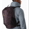 Arc'teryx Mantis 26 Backpack, Dimma, Side View